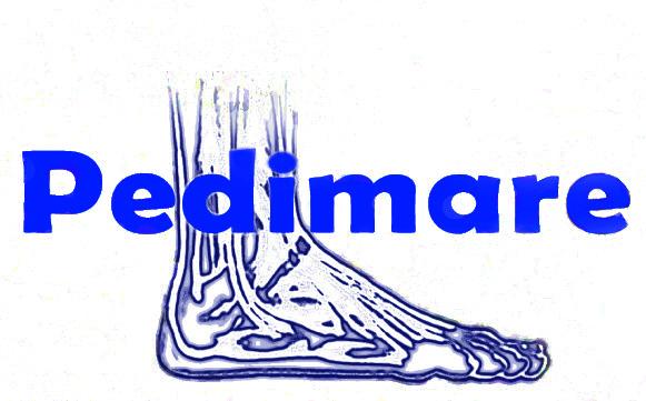 Logo Pedimare transparant (2)